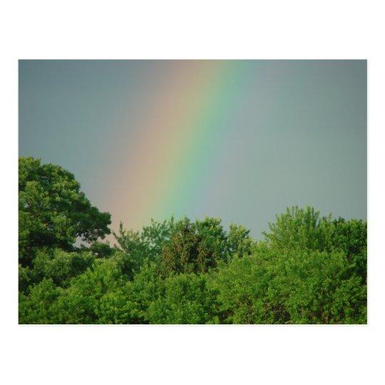 Rainbow Over The Trees Motivational Postcard