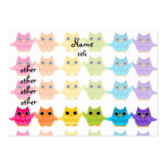 Rainbow Owls Pack Of Chubby Business Cards