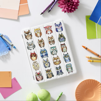 Rainbow owls watercolor iPad cover