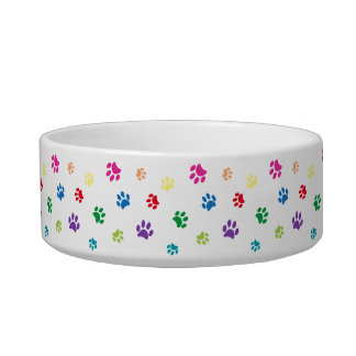 Rainbow Painted Paw Prints Bowl