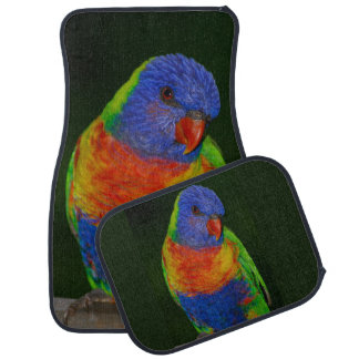 Rainbow Parrot Set of 4 Car Mats