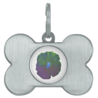 Rainbow Petunia Pet Tag