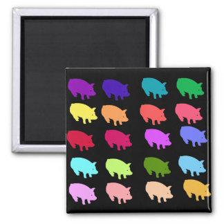 Rainbow Pigs Fridge Magnets