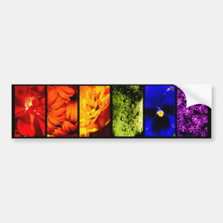 Rainbow Plant Life-Bumper Sticker Bumper Sticker