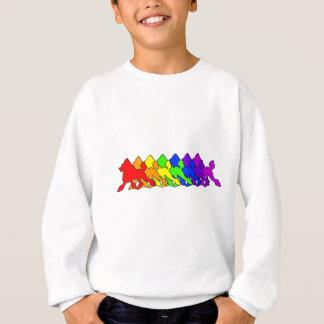 Rainbow Poodle Sweatshirt