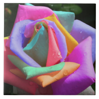 Rainbow Rose Tile