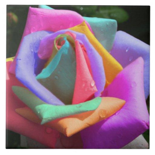 Rainbow Rose Ceramic Tiles