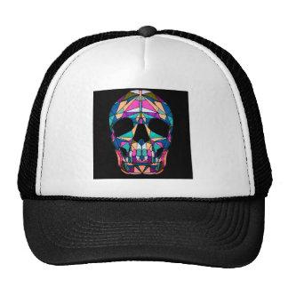 Rainbow skull mesh petten