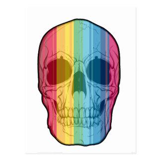 Rainbow Skull Postcard