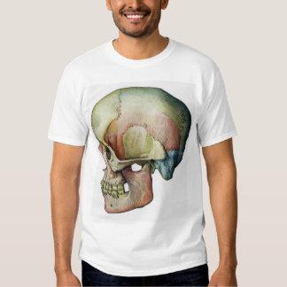 Rainbow Skull T Shirts