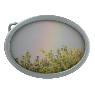 Rainbow Sky Belt Buckle
