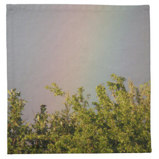 Rainbow Sky Napkin