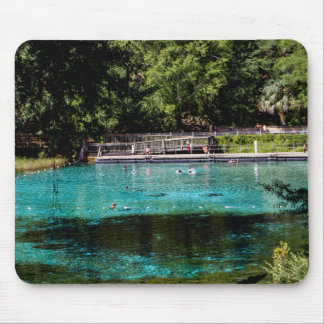 Rainbow Springs Mouse Mat