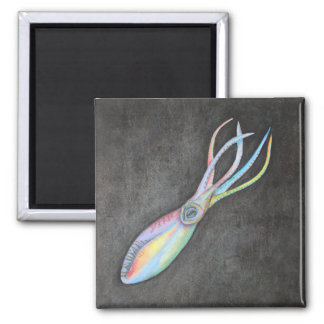 Rainbow Squid Magnet