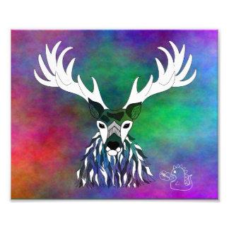 Rainbow Stag Print Photo