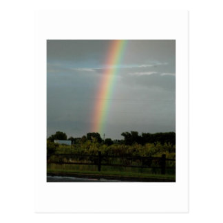 Rainbow the Pot of Gold - Postcard