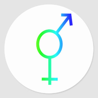 Rainbow Transgender Symbol #2 Round Stickers