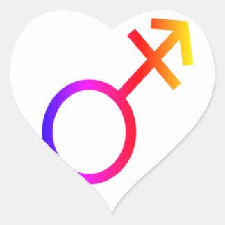 Rainbow Transgender Symbol #2 Heart Stickers