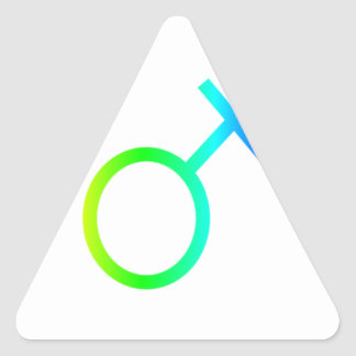 Rainbow Transgender Symbol Triangle Stickers