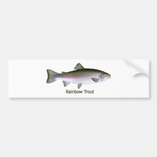 Rainbow Trout Fishing  Logo Bumper Sticker