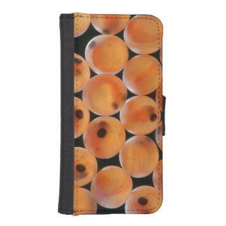 Rainbow Trout (Oncorhynchus Mykiss) Roe iPhone SE/5/5s Wallet Case