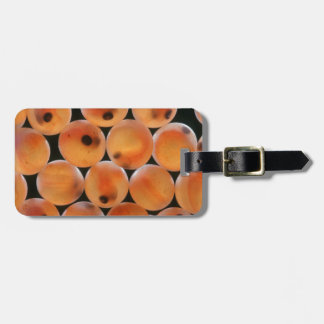 Rainbow Trout (Oncorhynchus Mykiss) Roe Luggage Tag