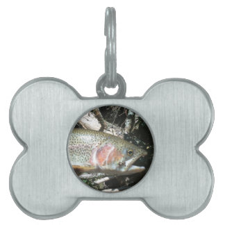 Rainbow trout pet ID tag