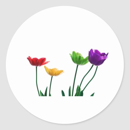 Rainbow Tulips Stickers