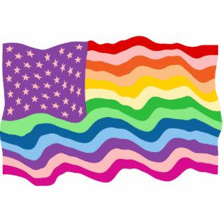 Rainbow US Flag Photo Sculpture Decoration