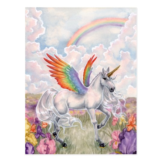 Rainbow Wings Postcard