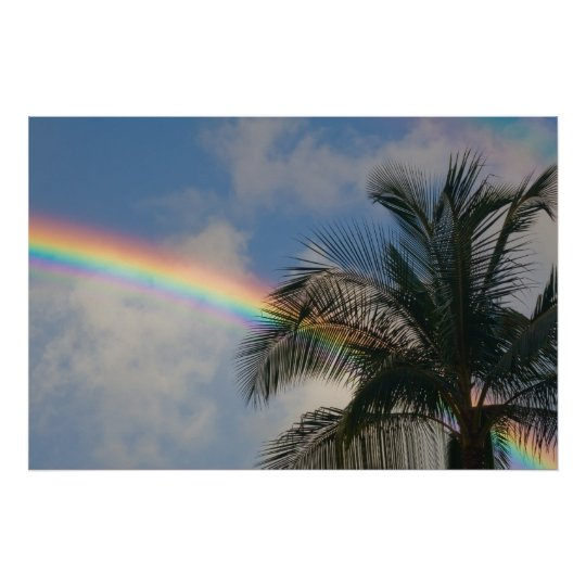 Rainbow with Palm Tree Poster