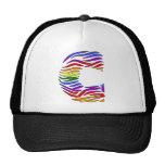 Rainbow Zebra Initials C