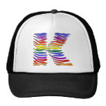 Rainbow Zebra Initials K