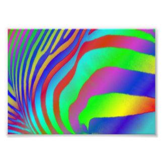 Rainbow Zebra Print Art Photo