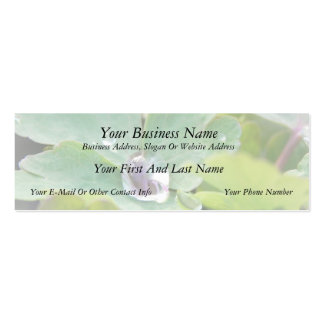 Raindrop on Columbine Leaf Pack Of Skinny Business Cards
