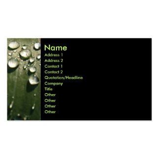Raindrop Shadows Business Card