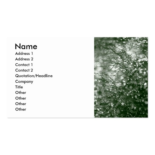 Raindrops Business Cards
