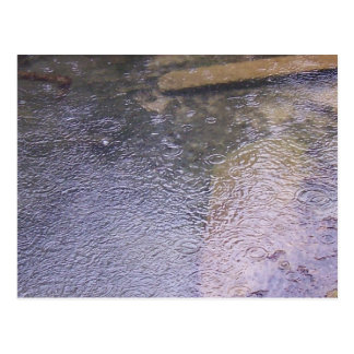 Raindrops in a Puddle Postcard