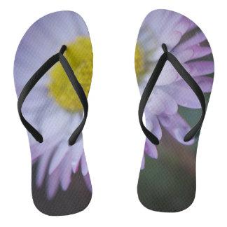 Raindrops on a daisy flip flops