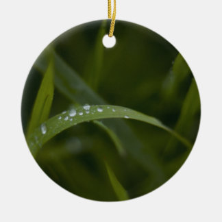 Raindrops on a Grass Leaf Ornaments