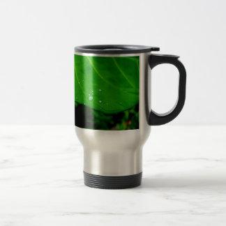 Raindrops on a Leaf Coffee Mugs