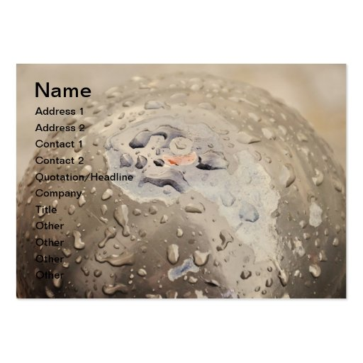 Raindrops on a pole business card templates