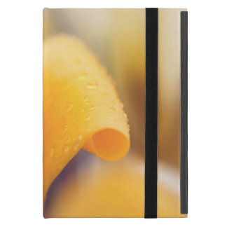 Raindrops on a yellow winter flower iPad mini cover