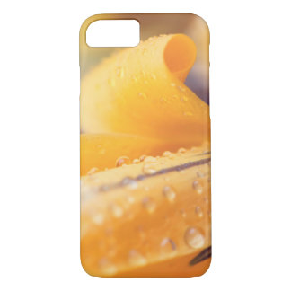Raindrops on a yellow winter flower iPhone 8/7 case