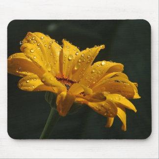 Raindrops on Daisy Mouse Pad