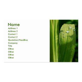 Raindrops on green leaf pack of standard business cards