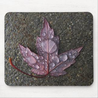 Raindrops on Leaf Mouse Mat
