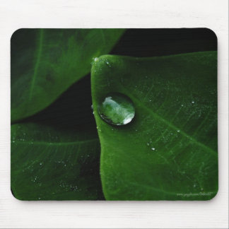 Raindrops on Leaves Mouse Pad