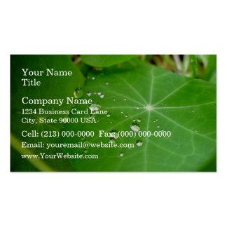Raindrops on nasturtium leaf business card
