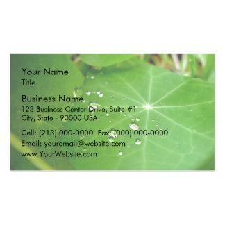 Raindrops on nasturtium leaf business card templates